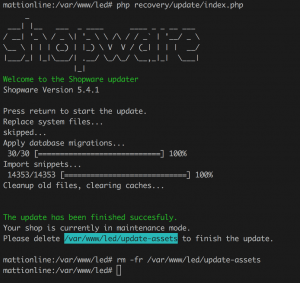 shopware update manually shell