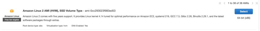 Amazon Linux 2 AMI (HVM), SSD Volume