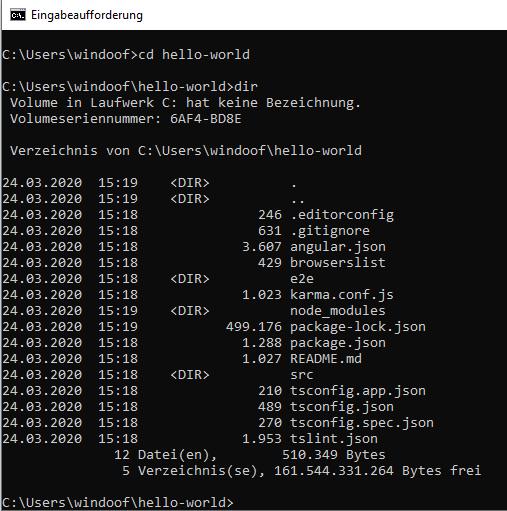 Angular Installation Windows 3