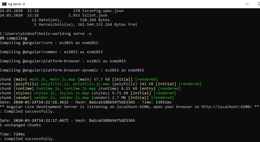 Angular Installation Windows 4