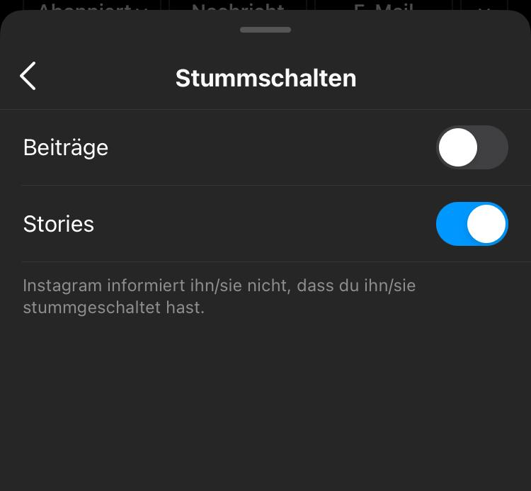 Instagram-Stummschalten-Option