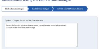 sedo domain verkaufen